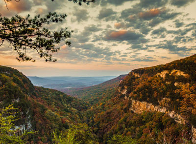 Cloudland Canyon Fall Colors overlooking the canyon