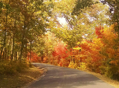 DeSoto State Park Fall Colors Scenic Highway, Photo Credit: Brittney Hughes, Park Naturalist