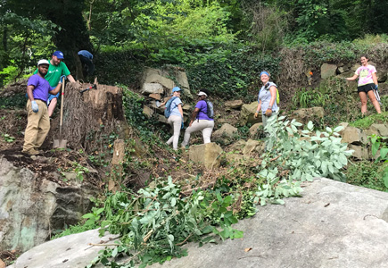Volunteer with LMC Interns working on clearing an old wall