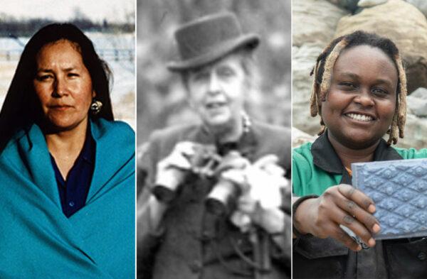 highlighting three women in conservation