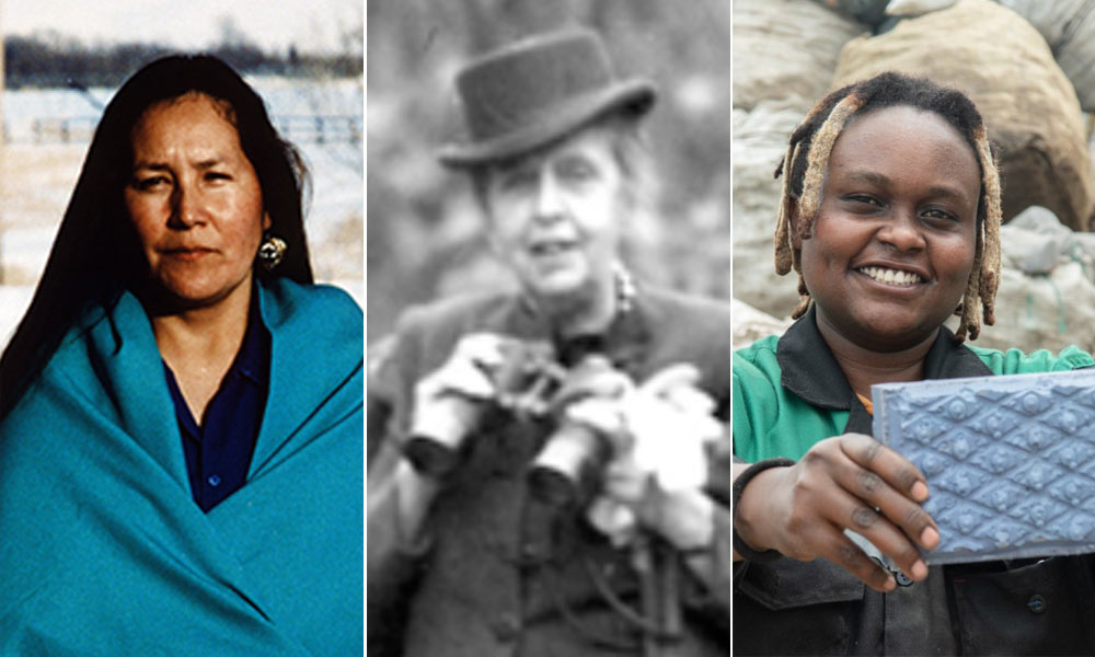 highlighting three women in conservation