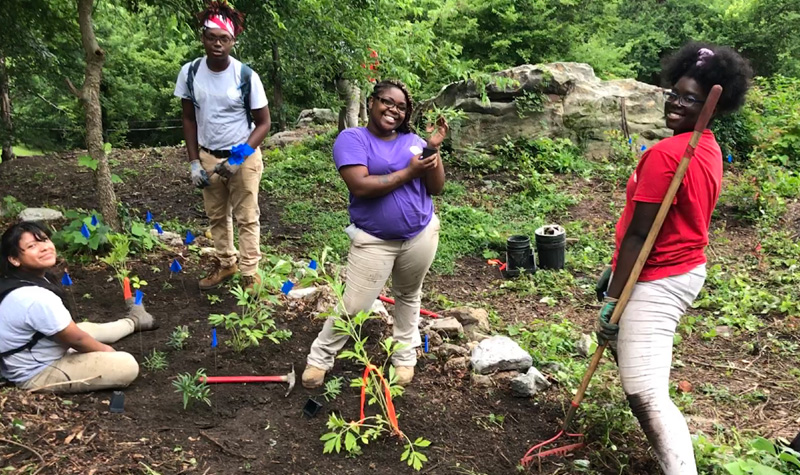 Interns in the pollinator garden where they have recently planted native species