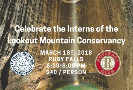 Falls room at the Ruby Falls Cavern