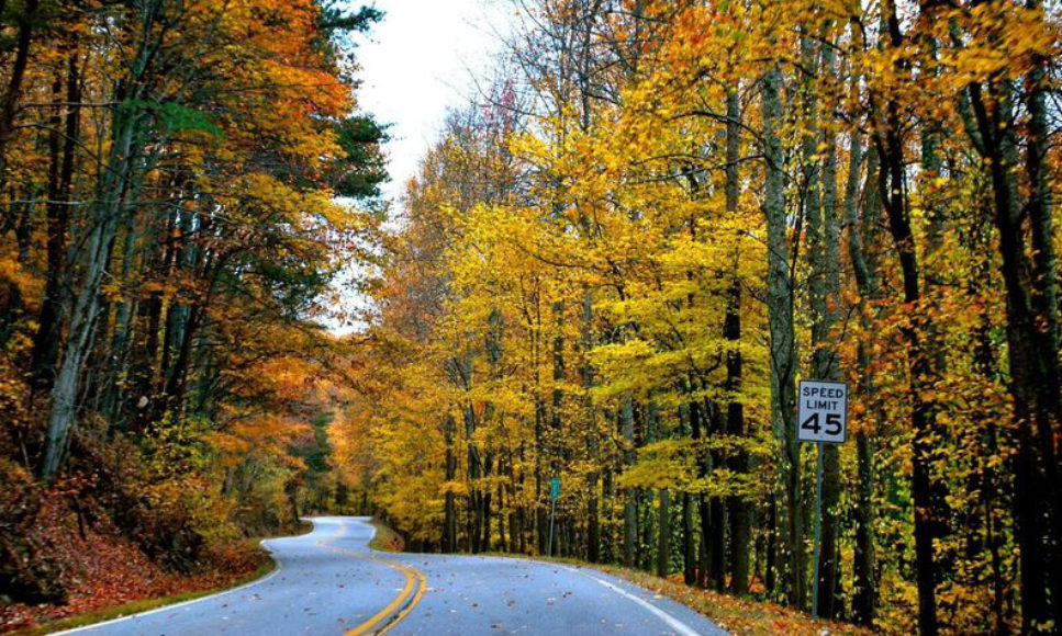 Five Great Places to see Fall Color on/from Lookout Mountain