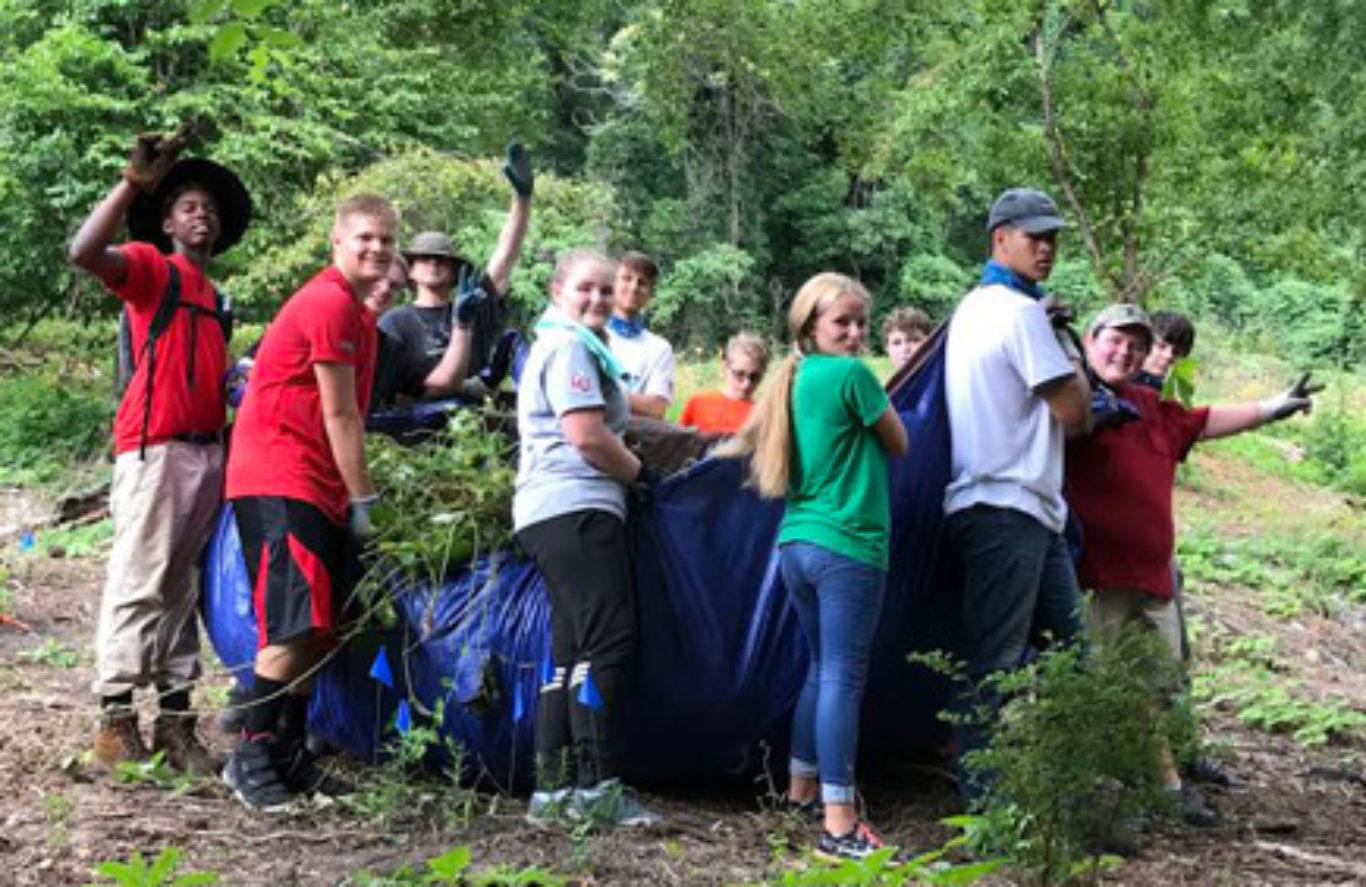 Volunteer Day – Weed Wrangle 2020